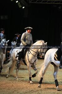"""15./16.10.2016 Impressionen der Messe """"Hund & Pferd"""""""