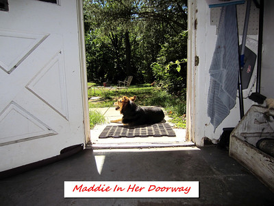 Summer Doorway