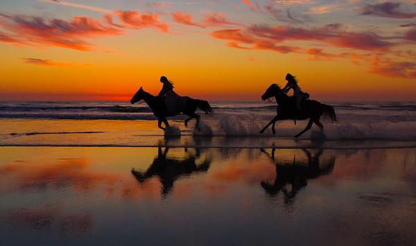 Horses on the Beach 2019