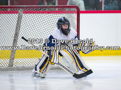 2/18/2013 - Squirt A Championship - Needham vs Arlington