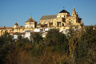 Córdoba - Granada / 2.12.2010