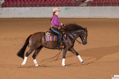 Wednesday Novice Horse Set 5 32-39