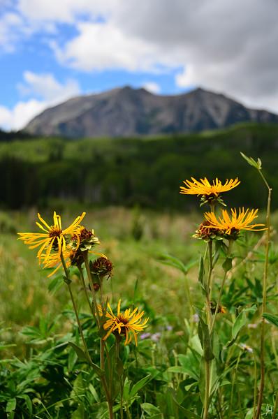 Gunnison National Park, Colorado