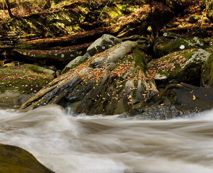 IMGP9034 along slippery rock creek 9034.jpg