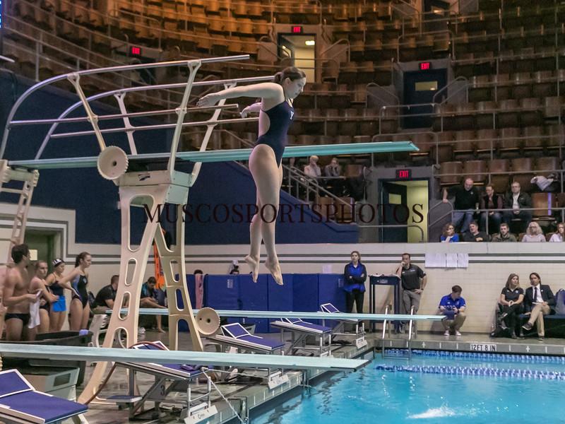 Swimming-diving vs Seton Hall_1157.jpg
