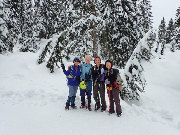 Hike Mount Seymour, Vancouver,Canada, Jan 27,2017