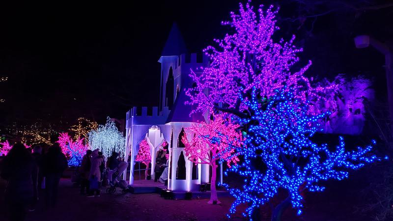 Toronto-Aurora-Winter-Festival-34.jpg