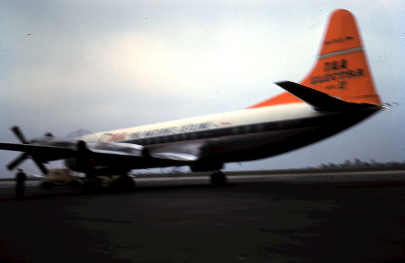 1961-6-10 (6) Auntie Kitty arriving @ Essendon.JPG