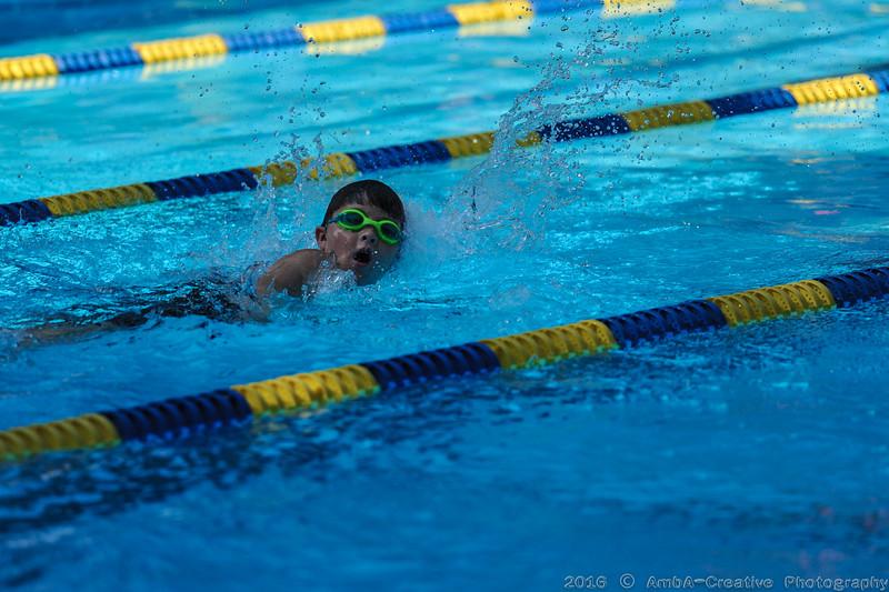 2016-06-25_HAC_SwimMeet_v_Hornets@YorklynDE_027.jpg