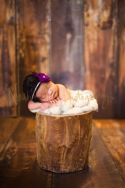 Aspen | Newborn