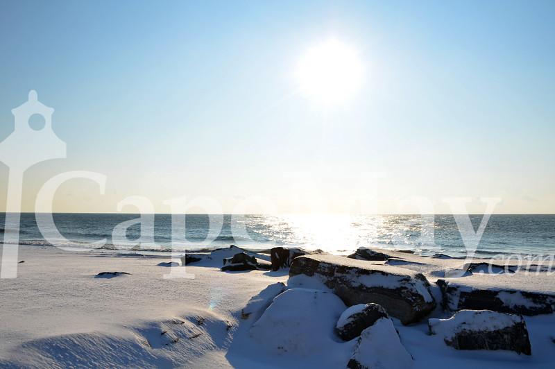 Jan12-2011.jpg