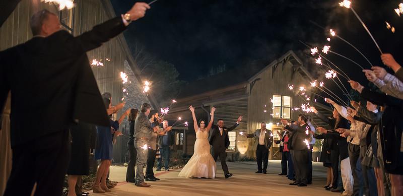 Houston Wedding Photography ~ Audrey and Cory-1204.jpg