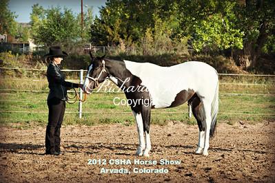 Colorado Stock Horse Association September 16th 2012