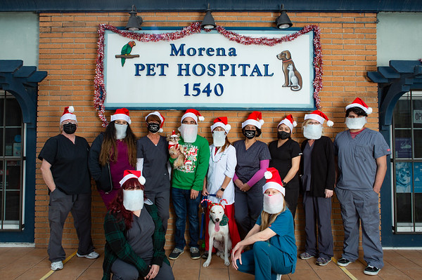 Morena Pet Hospital