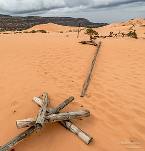Coral Pink Sand Dunes & Bryce Canyon