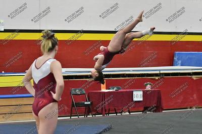 UC Gymnastics 2018