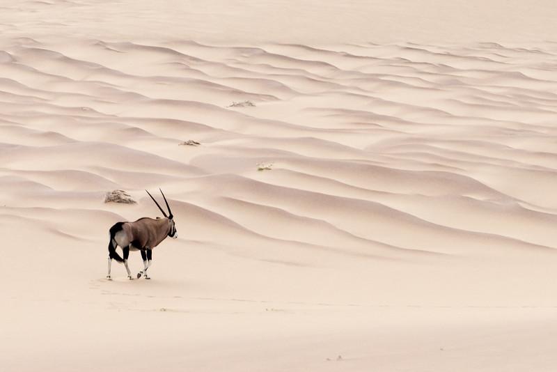 2015 Namibia