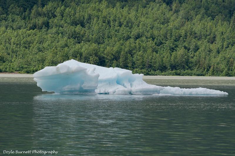 Juneau11.jpg