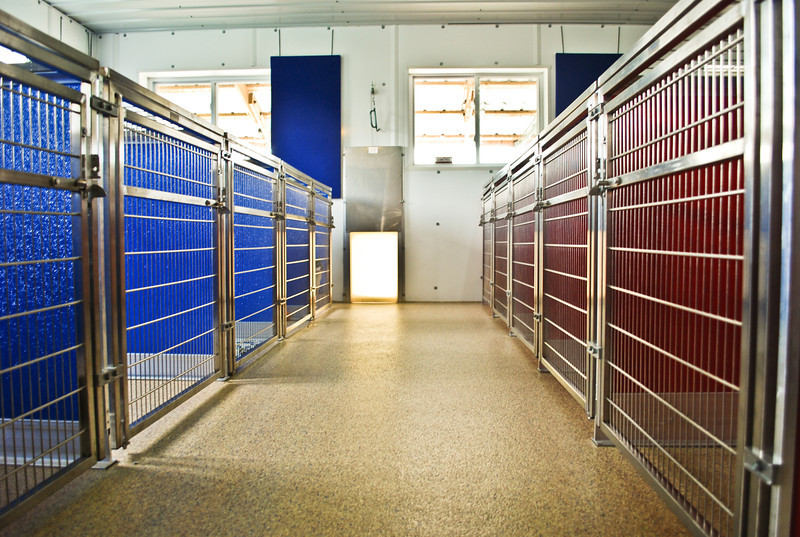 kennel-may-2012-14.jpg