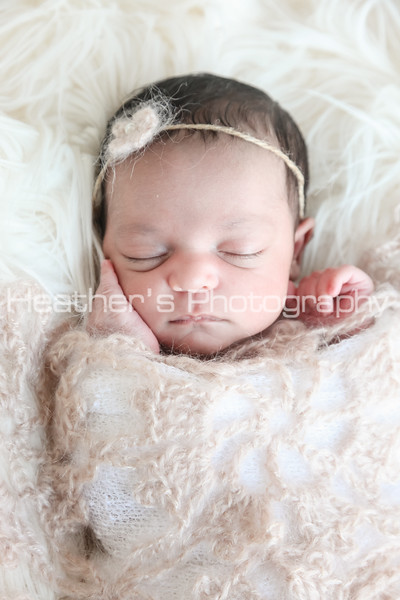 Zara's Newborn Gallery_014