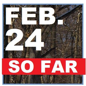 24 FEBRUARY (so far)