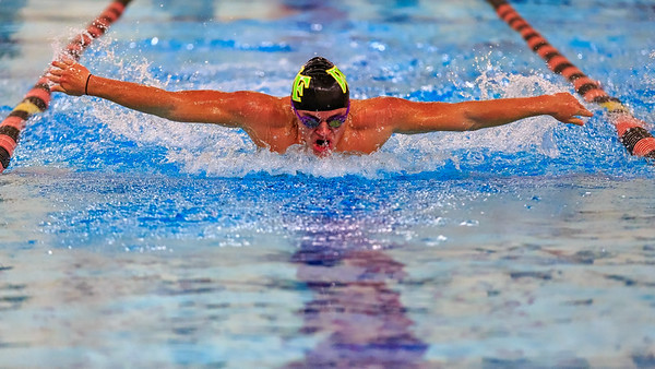 West Forsyth Swimming 2018/19