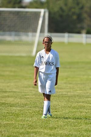Michigan Hawks - Girls U11