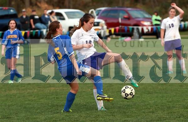 Downsville Soccer
