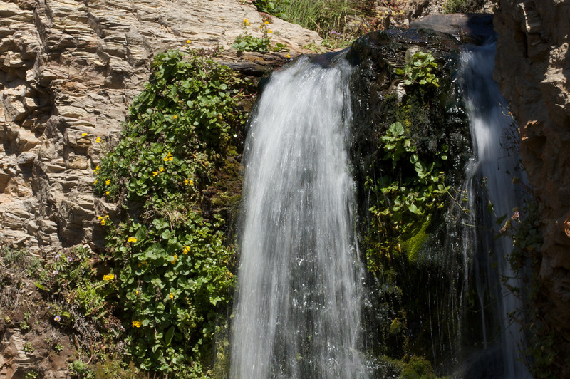 Alamere_Falls_15.jpg