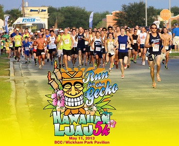 Run for the Gecko 2013
