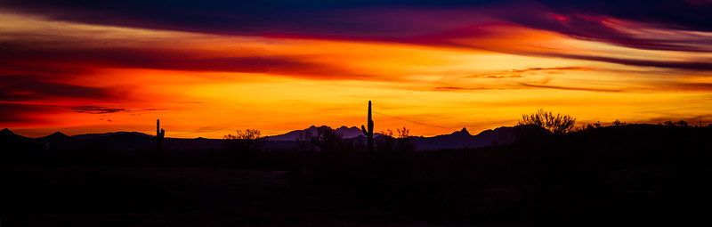 Panoramic image of a sunset over the Sonoran