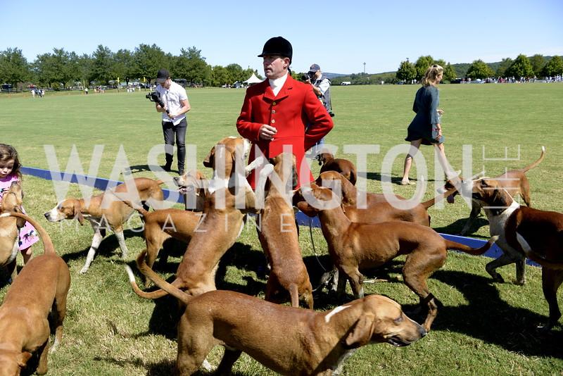 Orange County Huntsman Reg Spreadborough and hounds,  NSLM 2019 Polo Classic Great Meadow Sep 15 2019 Photo by Nancy Milburn Kleck