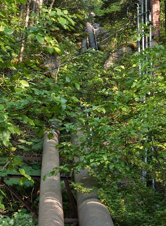 Lower Dewey Lake Trail