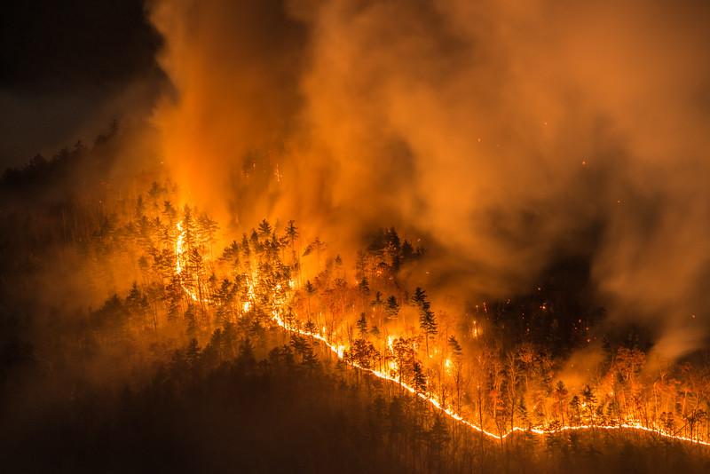 Linville Gorge Fire