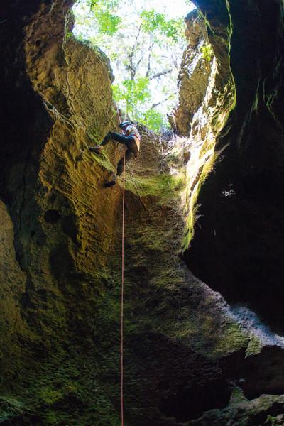 Maynard's Cave, FL