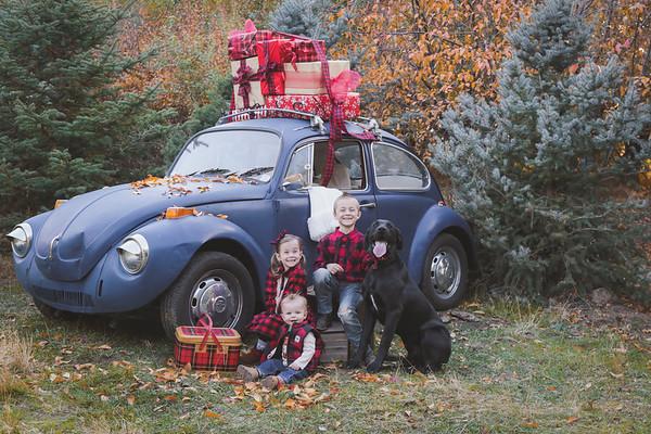 The Nelsons {Christmas Mini 2017}