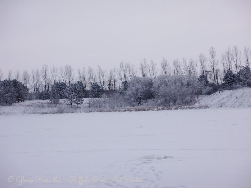 ice fishing view