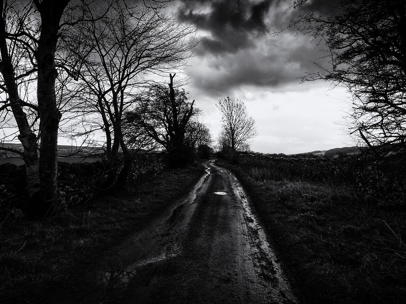 The Dark Lane