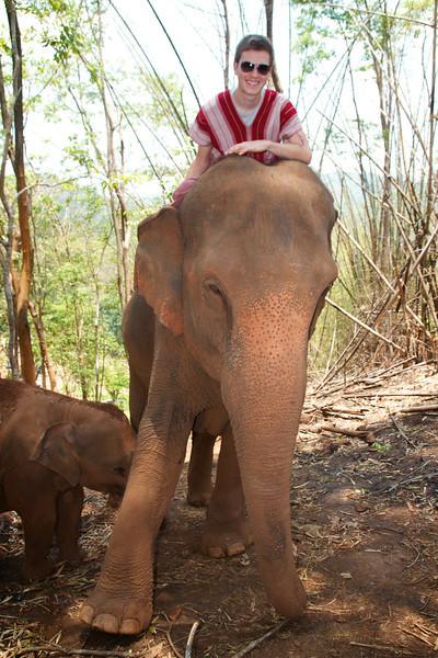 Roewe_Thailand 113.jpg