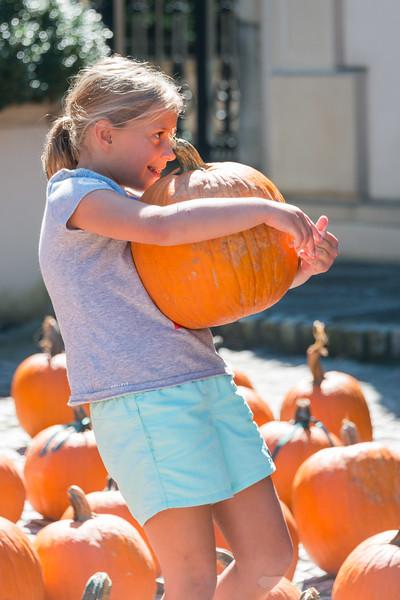 Dorsey Alston Pumpkin Patch (3 of 32).jpg