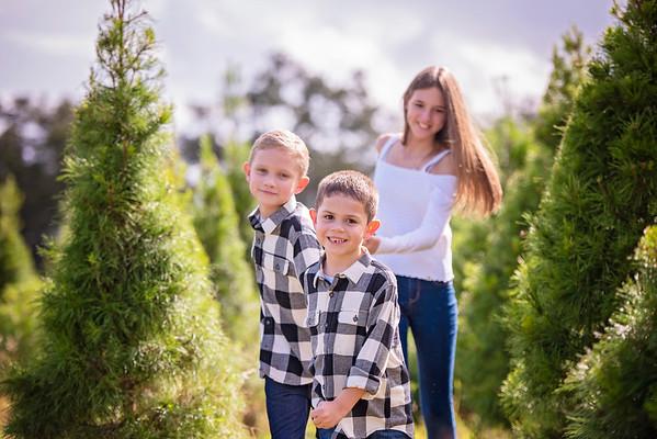 Tree Farm Nov 2020 - Hughes