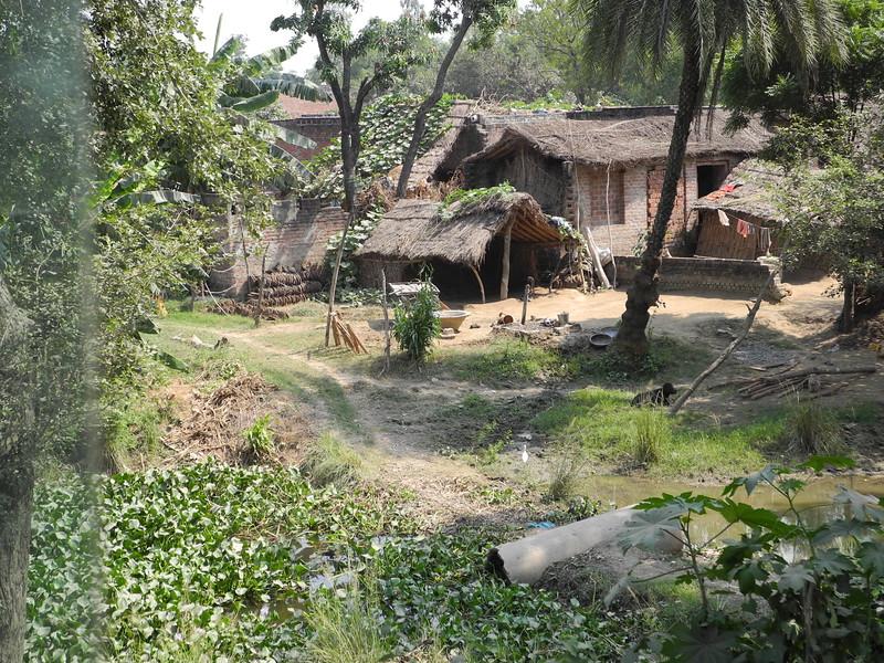 india2011 732.jpg