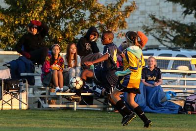 Nov 12 - Soccer Gold vs SEAS