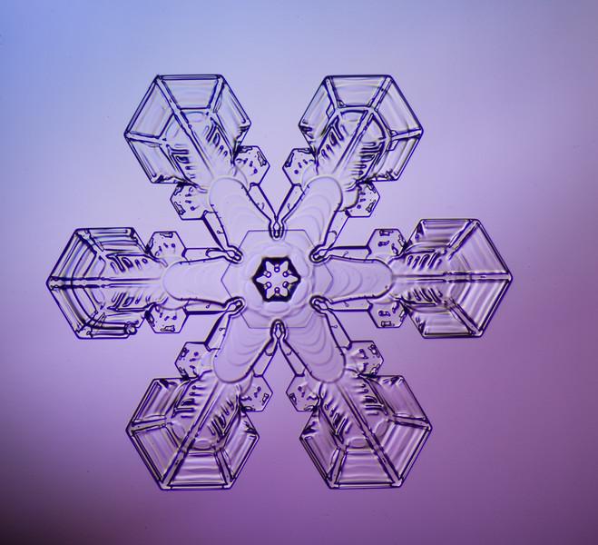 snowflake-0269-Edit.jpg