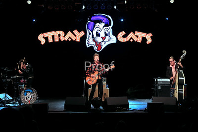 Stray Cat Proofs