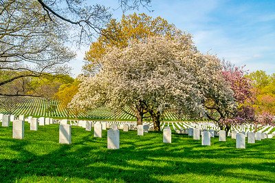 Arlington National Cemetery:  Famous Graves