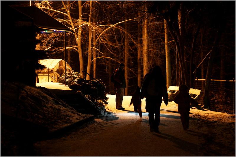 ZOO večer a ještě pod sněhem má zvláštní atmosféru
