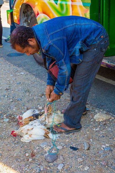 Timor Leste-232.jpg