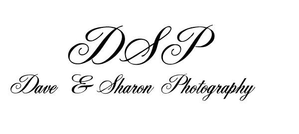 logo Dave & Sharon.jpg