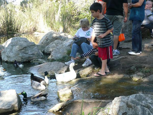 2009 11 15 Wilderness Park